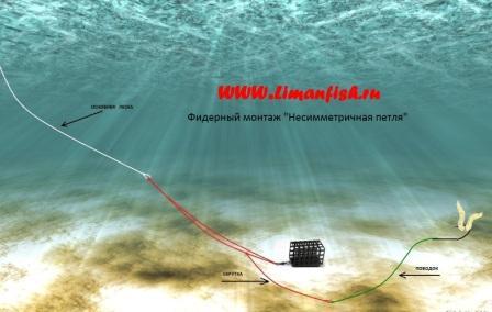 Фидерный монтаж LimanFish Несимметричная петля с поводком, Кормушка LimanFish оц. 70гр