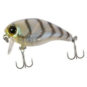 Воблер JACKALL Chubby 38 SSR suji shrimp