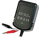 Зарядное устройство Robiton La12-900 (220В)