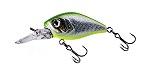 Воблер FISHYCAT icat 32F-DR / R12
